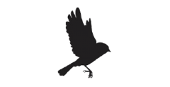 cropped-cropped-cropped-nestspace-logo1.png